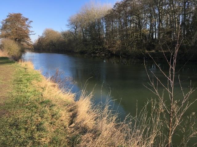 River Thames, near Little Wittenham