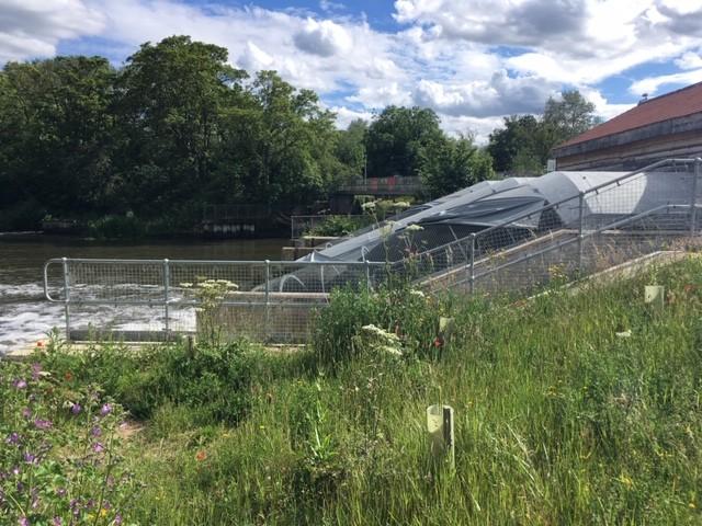 Sutton Courtenay weir hydro power