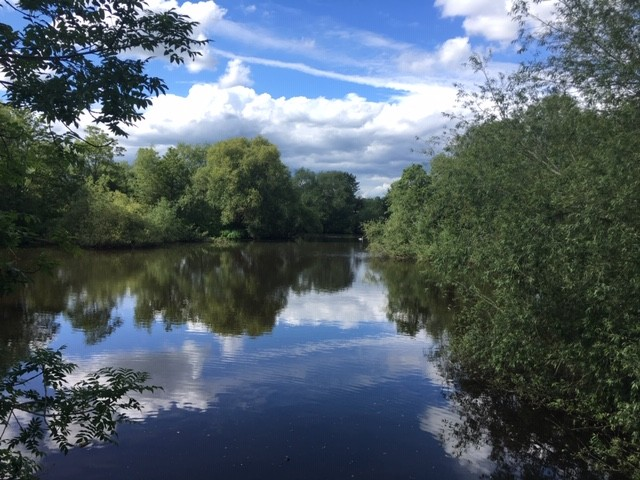 View from sluice gate, Sutton Courtenay pools