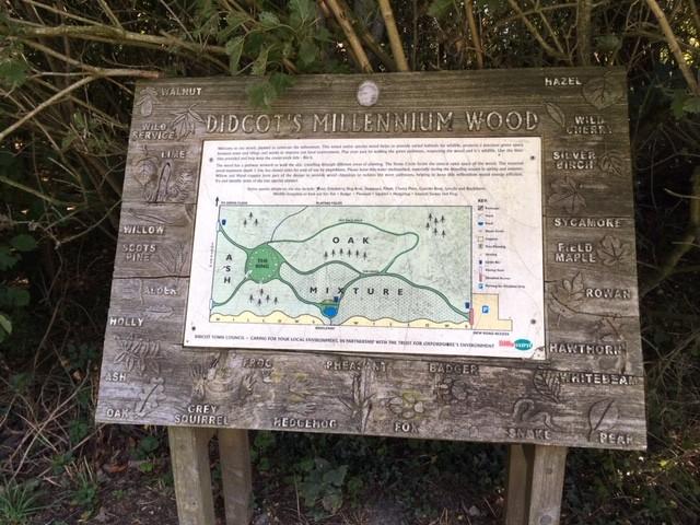 Millenium Wood, Didcot