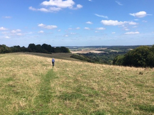 View from Lardon Chase