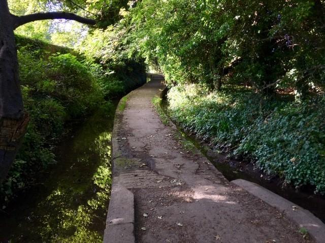 Tadley stream, East Hagbourne