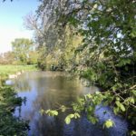 Walks near Didcot: East Hagbourne - Blewbury Mill circular route