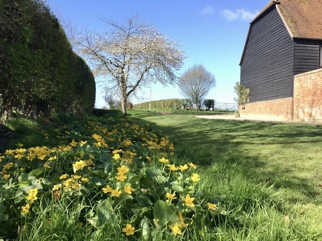 Manor Farm Lane, East Hagbourne