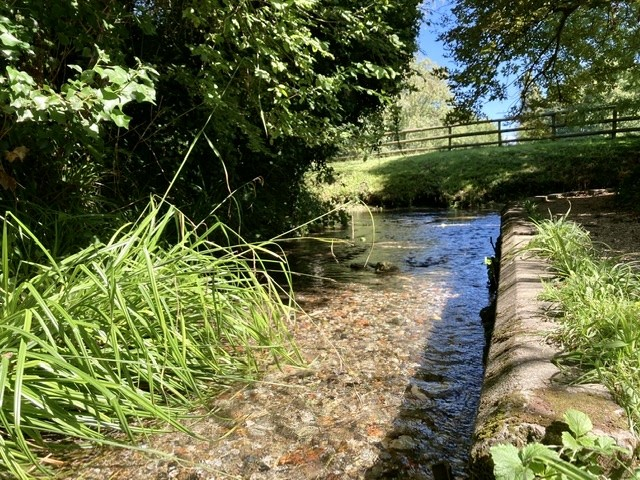 Millbrook stream, Blewbury