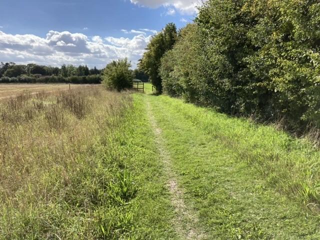 Path towards Broad Arboretum