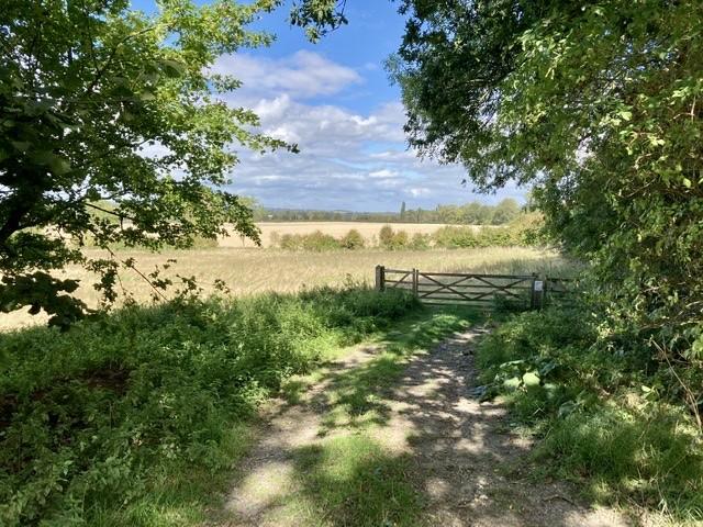 Path towards Long Wittenham