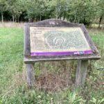 Earth Trust Broad Arboretum, near Long Wittenham