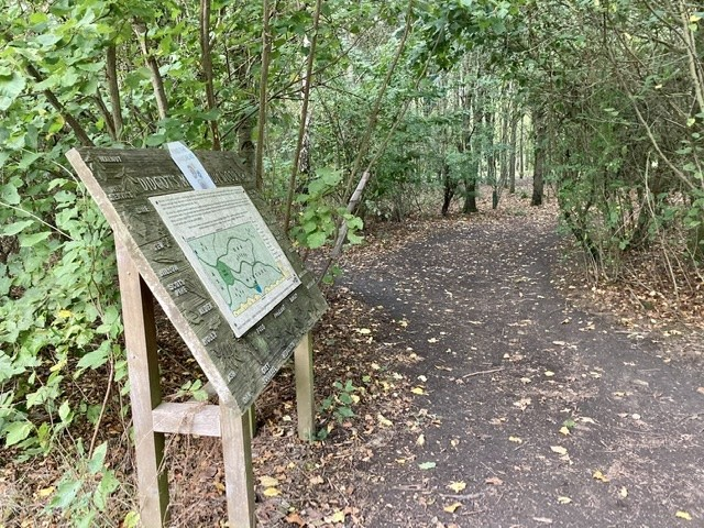 Millennium Wood, Didcot