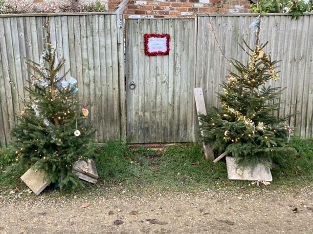 Hagbourne Christmas trees