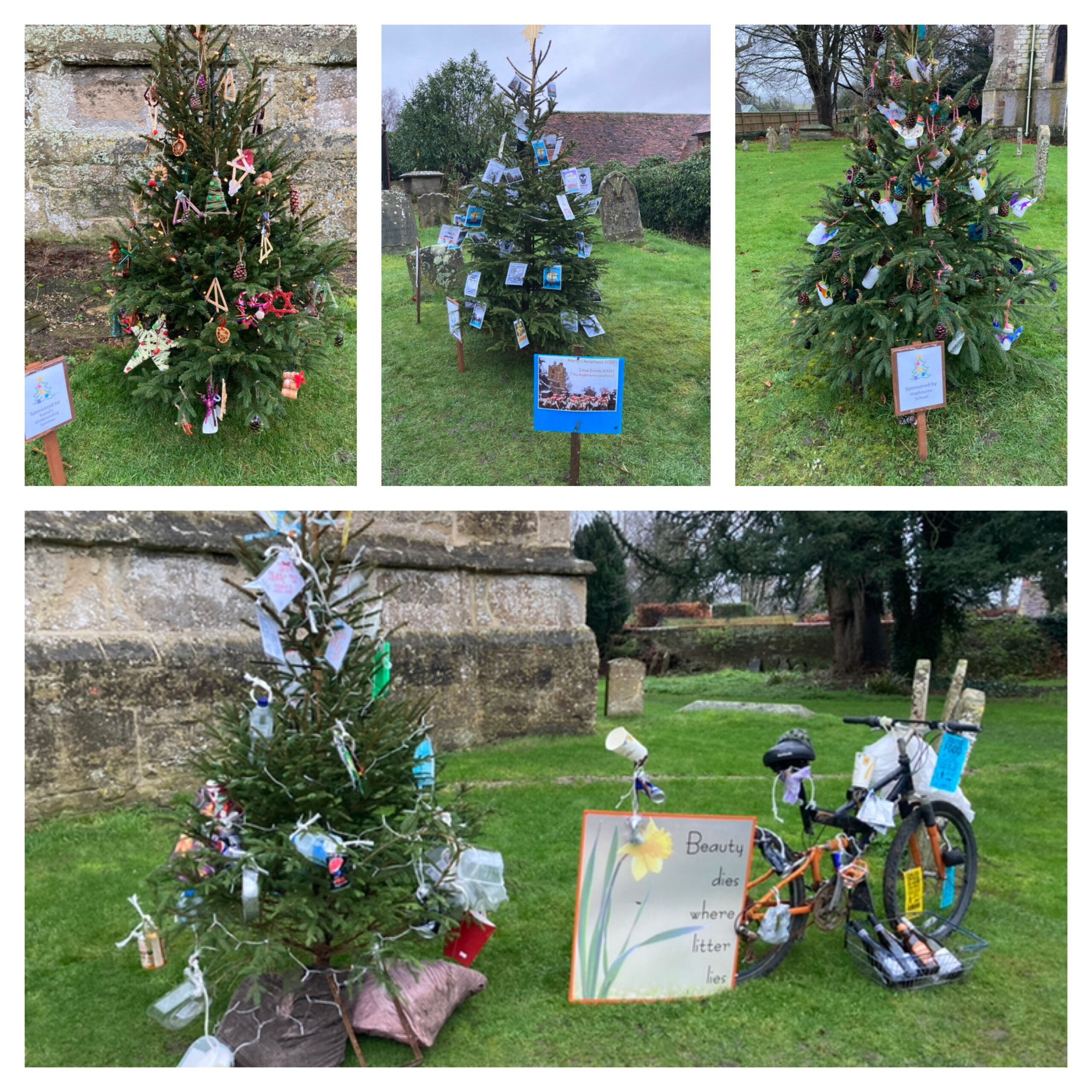 Themed Christmas trees, East Hagbourne