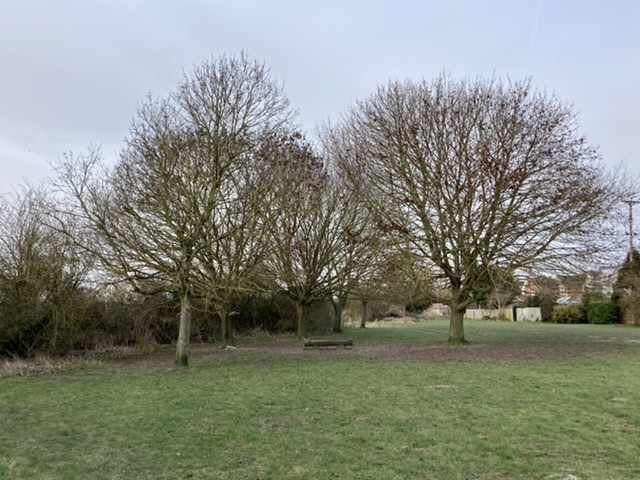 Mowbray Field in winter, Didcot