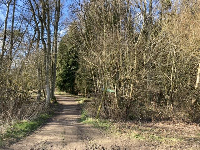 Entrance to Little Wittenham Wood