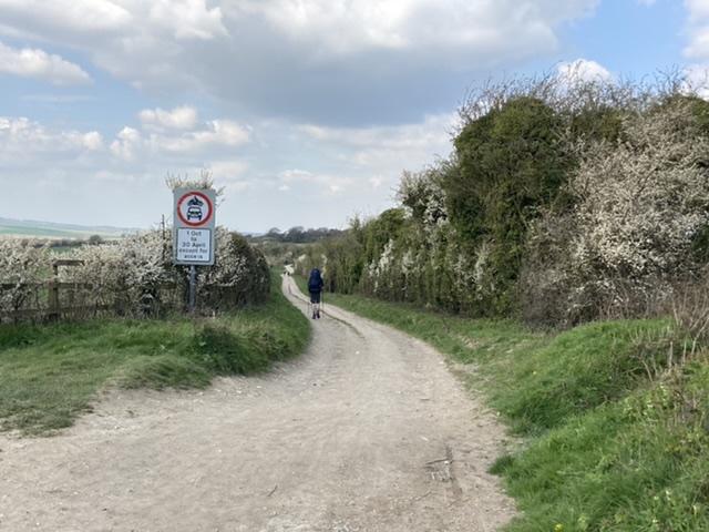Ridgeway, near Aldworth
