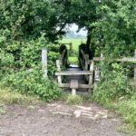 Walks around Didcot: Upton, Blewbury and East Hagbourne circular