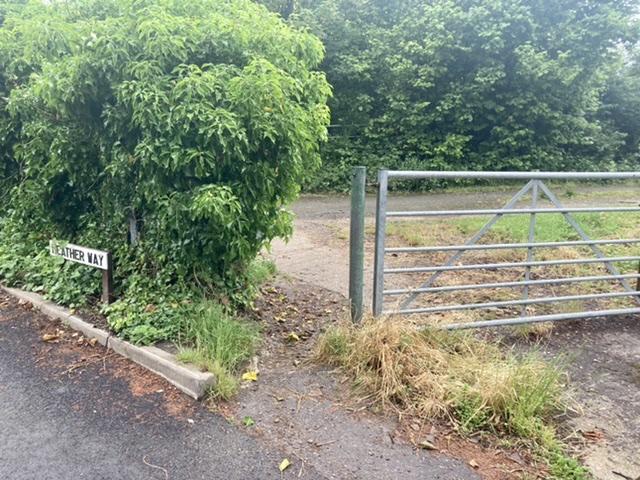 Path is between gate and bush, Blewbury