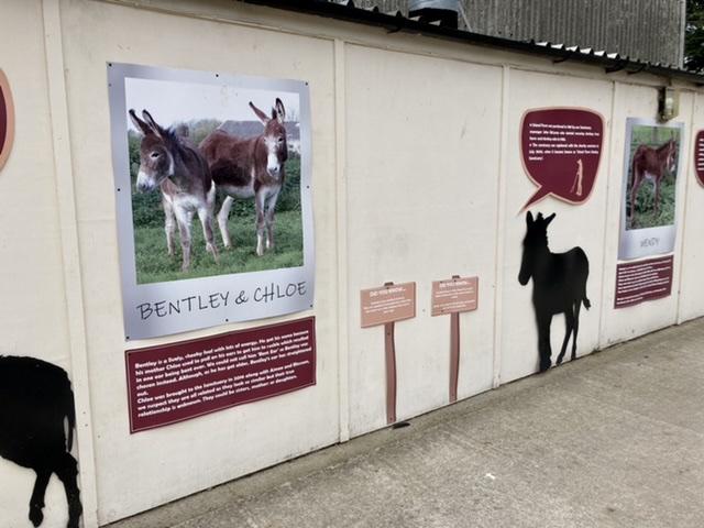 Information boards at Island Farm Donkey Sanctuary